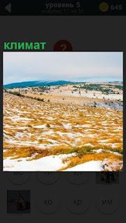 До самого горизонта долина покрытая снегом и редкие кусты, климат