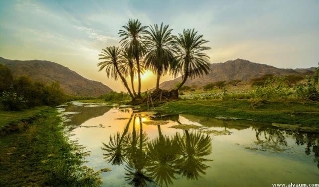 المياة الجوفية في السعودية
