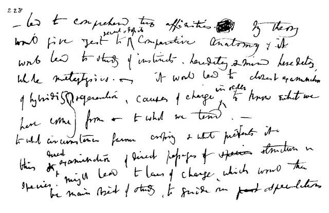 darwin's letter