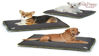INSECT SHIELD KENNEL MAT