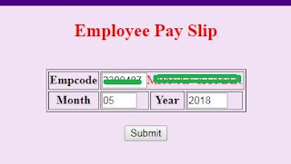 employee pay slip sample