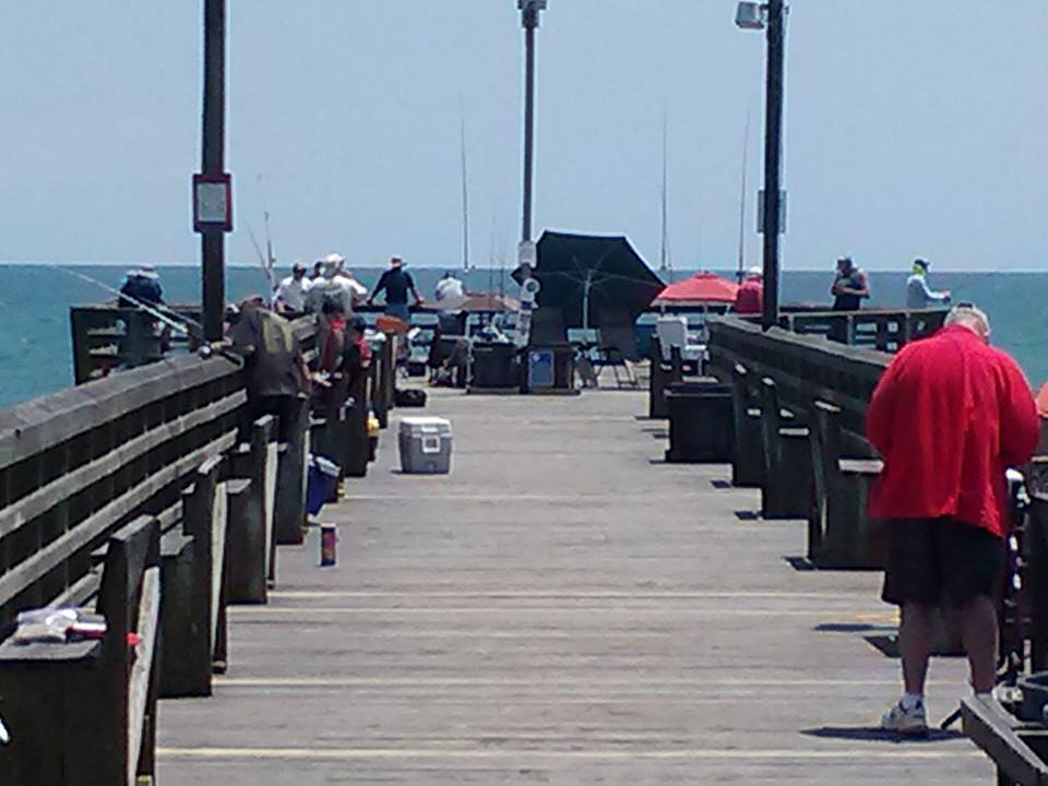 May 2016 for Surf city pier fishing report