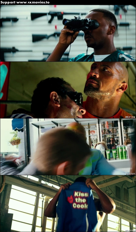 Pain and Gain 2013 Dual Audio Hindi 720p BluRay 1.1GB