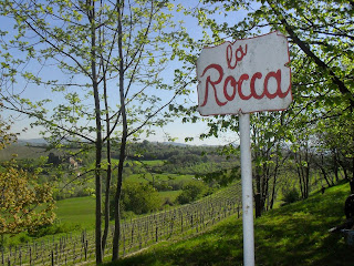 La Rocca vineyard of Coppo winery
