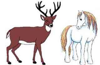 Nueva narración: El caballo y el ciervo