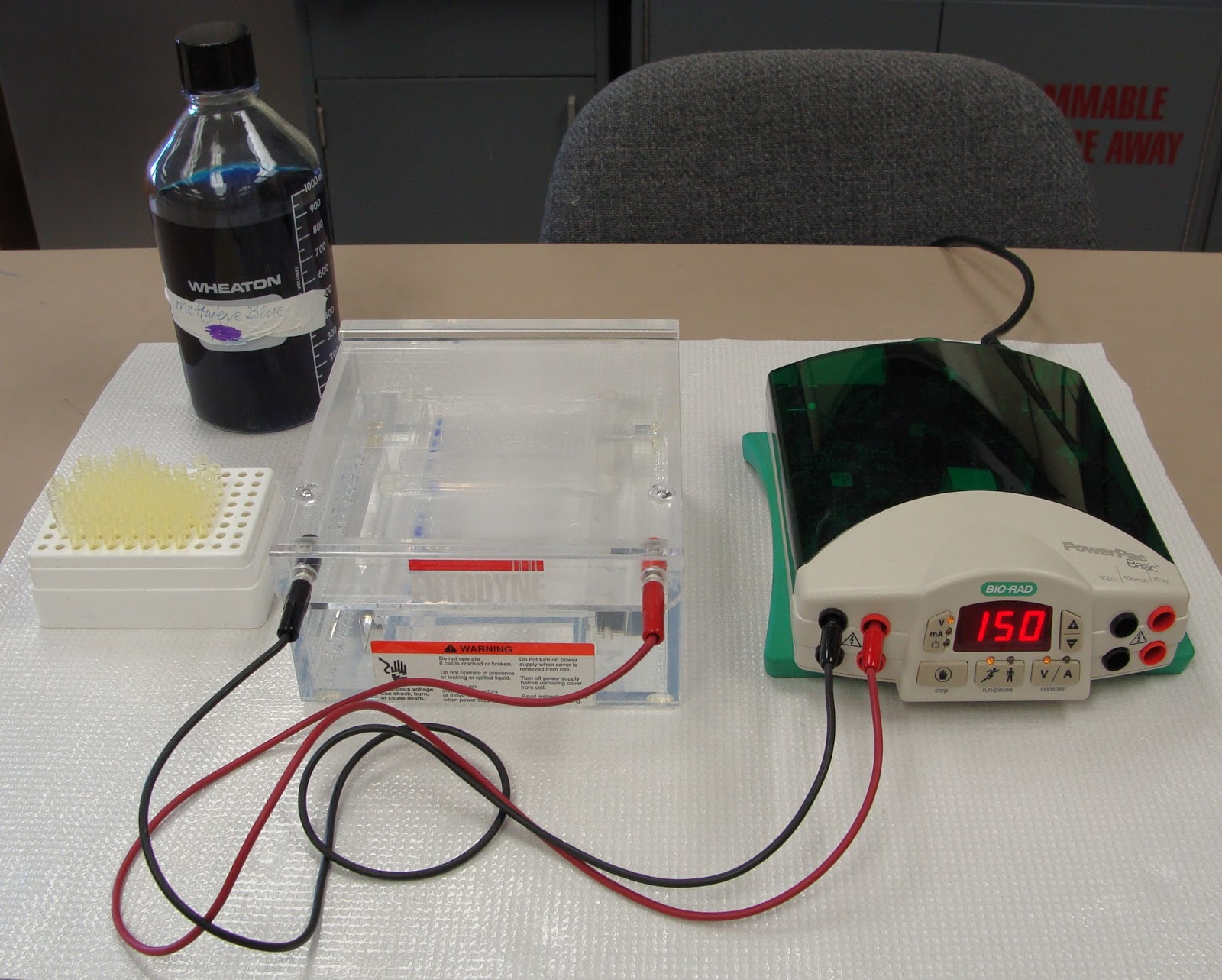 an analysis of dna electrophoresis in molecular biology The mobility of a molecule during gel electrophoresis also depends on its molecular size and shape  electrophoresis of dna,  introductory gel electrophoresis / .