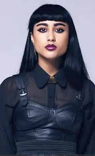 natalia kills wiki controversy video blog vedete