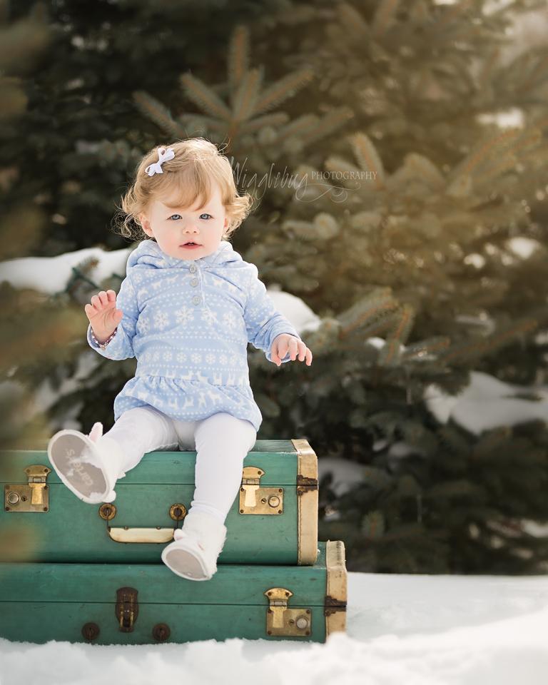 Best newborn baby photographer deKalb sycamore il