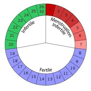 Menstrual cycle Symptoms - What Happening in Menstruation Period