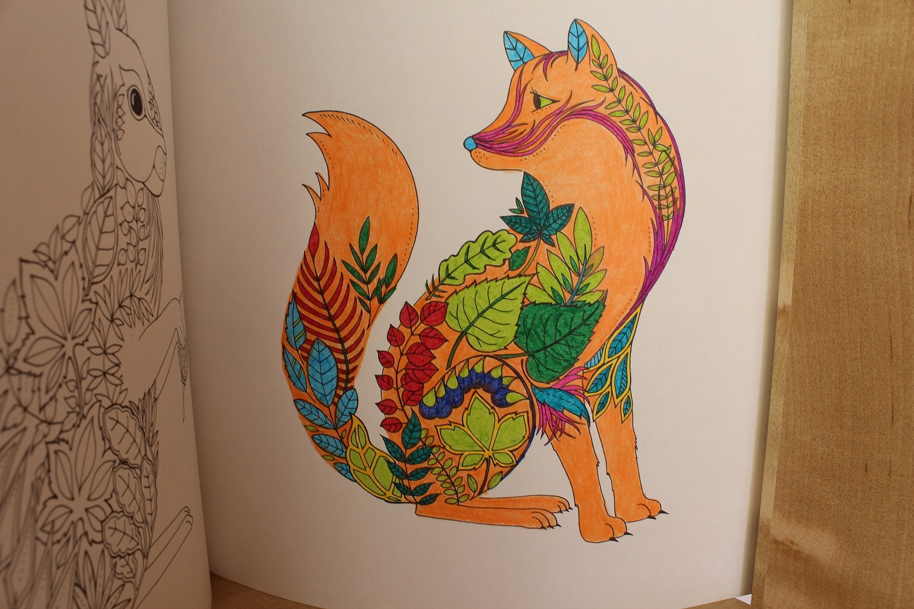 Faber Castell Boyama Kitaby Resim Cizmek