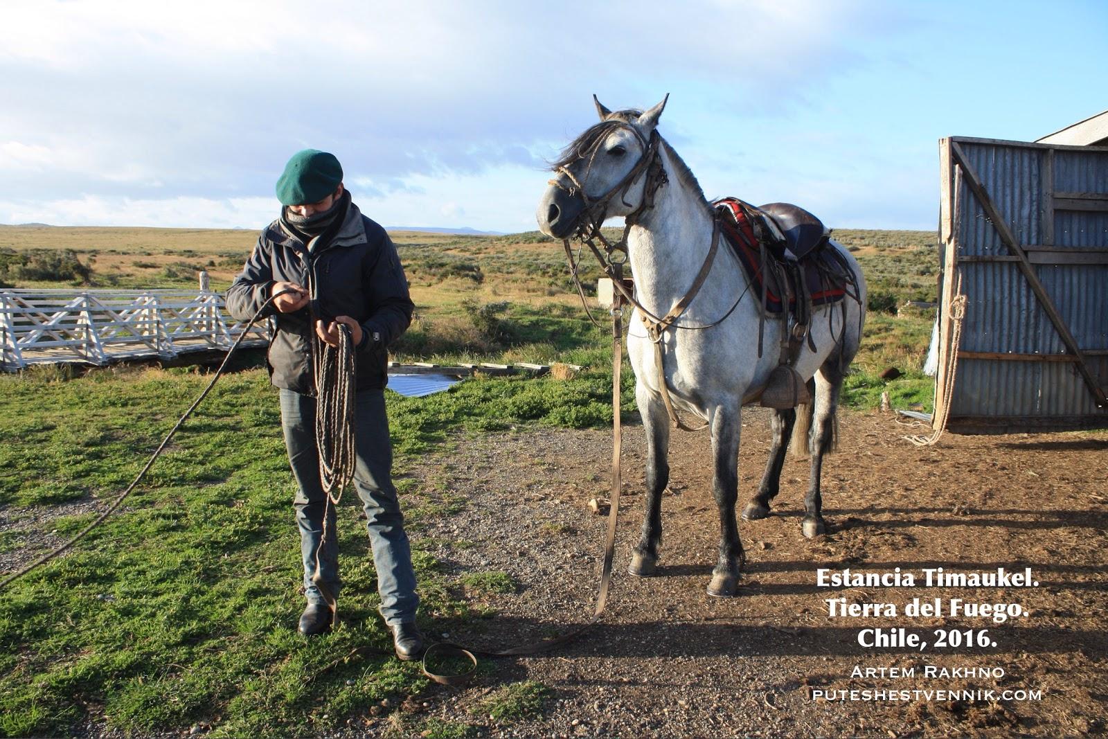 Гаучо с лассо и лошадь