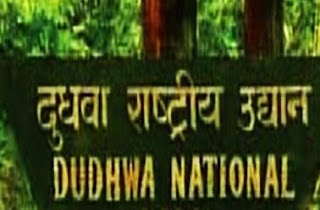 dudhwa-national-park-opened-for-tourists