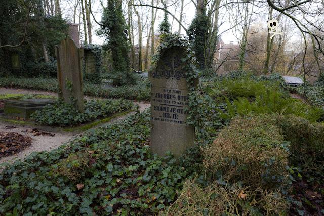Hojas de acanto decorando una lápida que surge entre las hiedras