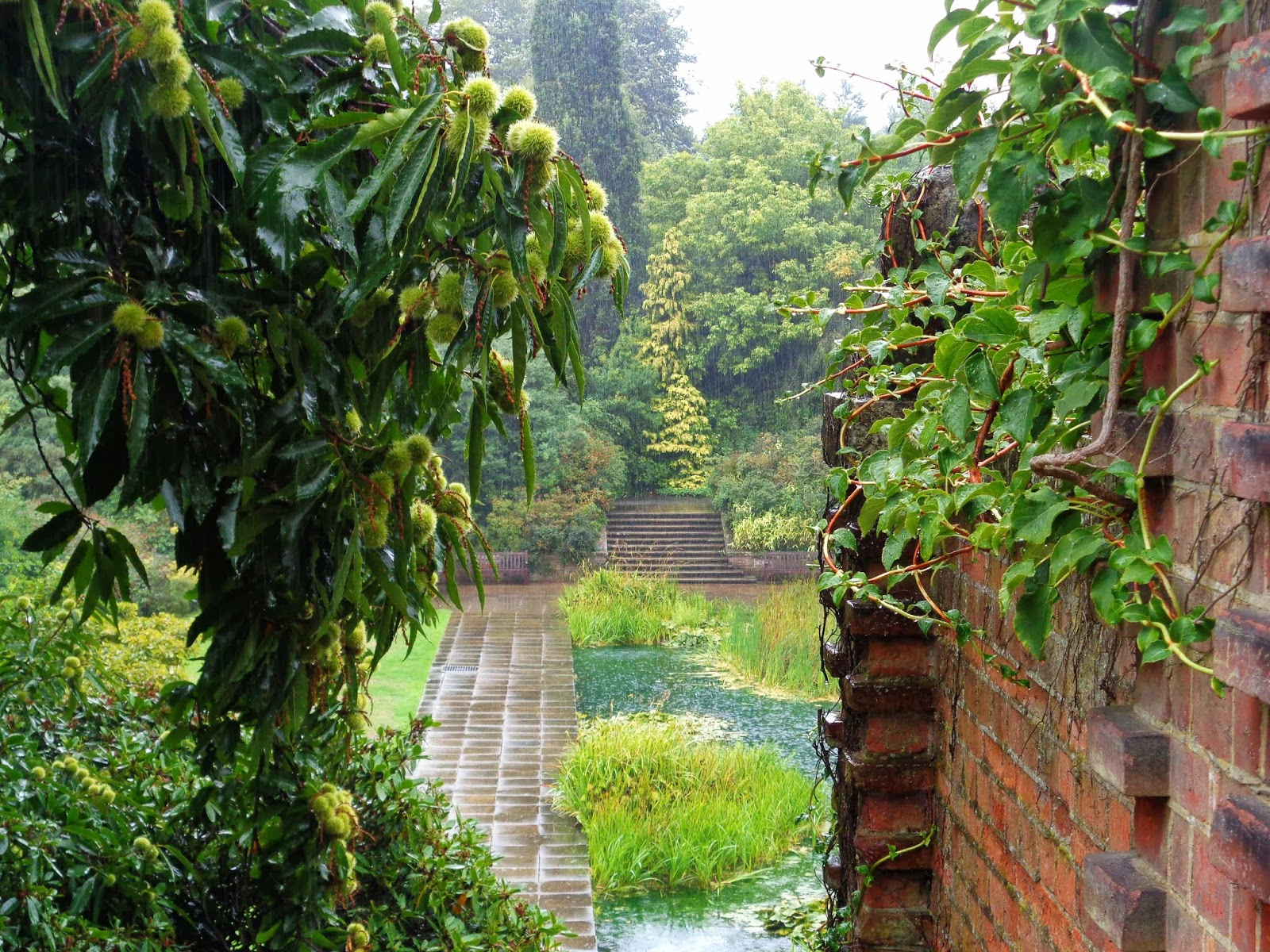 Photo Diary: Hampstead Heath Hill Gardens and Pergola in the Rain