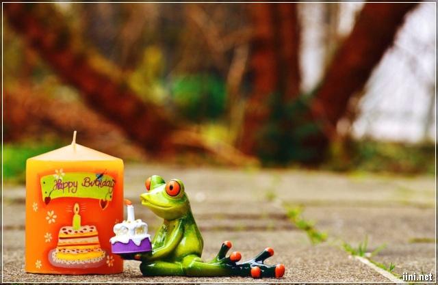 ảnh mừng sinh nhật dễ thương có hình con ếch
