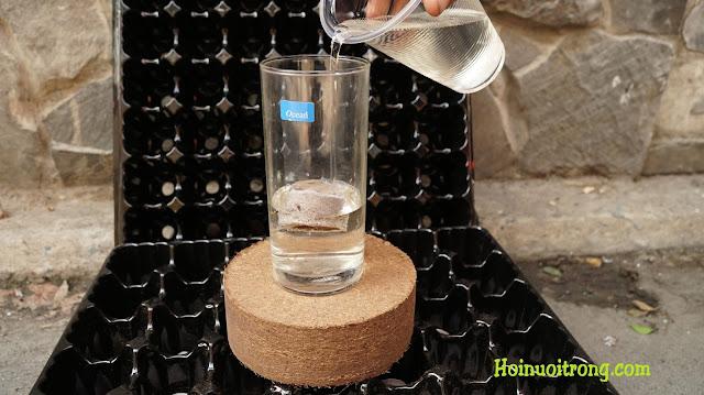 Bắt đầu cho nước vào, chúng tôi cho khá nhiều so với cần thiết thực tế để dễ thấy sự thay đổi