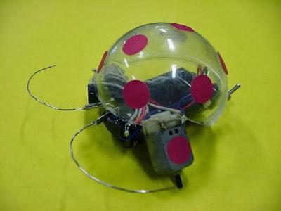 Robot Sederhana Beetlebot