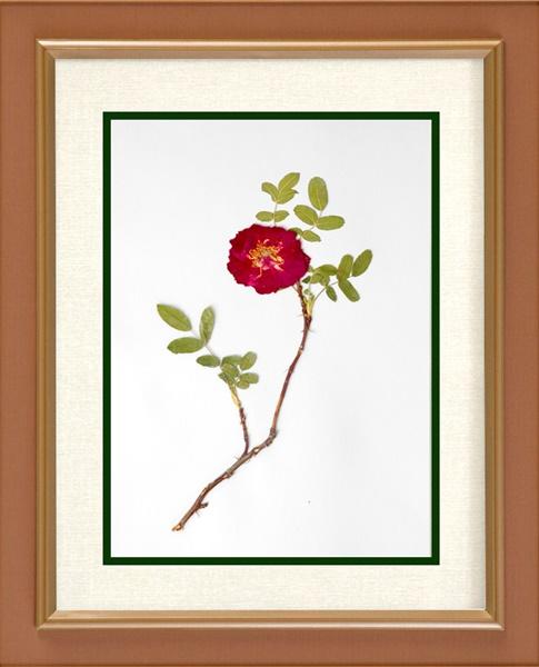 kerajinan dari bunga kering