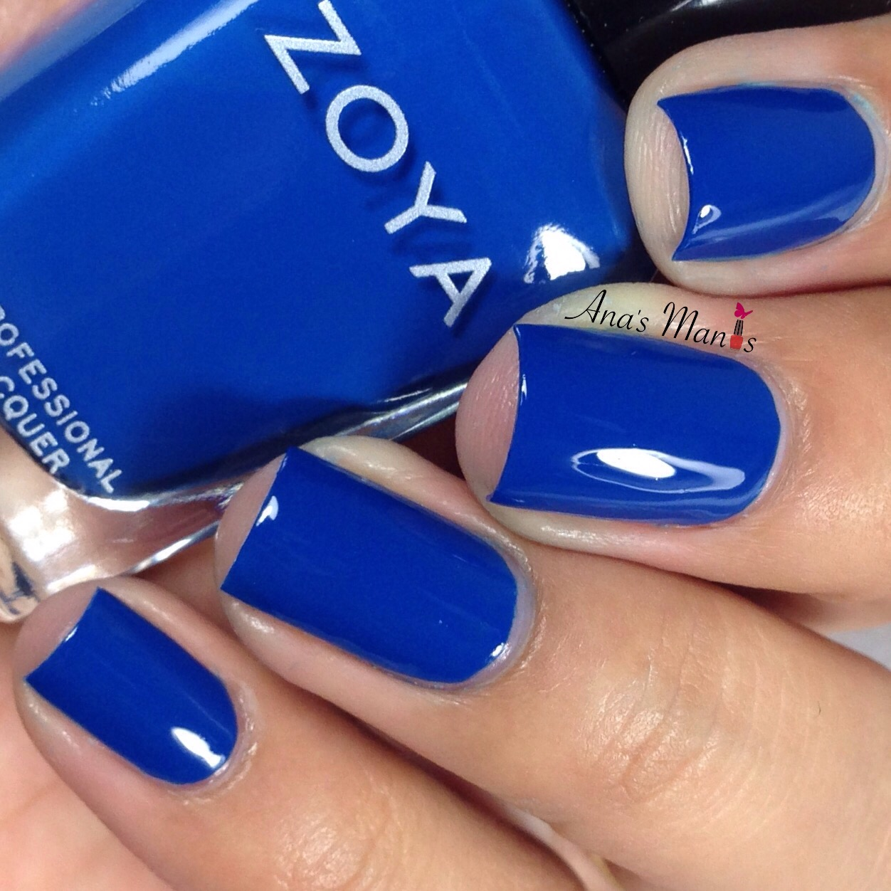 Ana\'s Manis: Zoya Nail Polish Urban Grunge Fall Collection 2016 ...