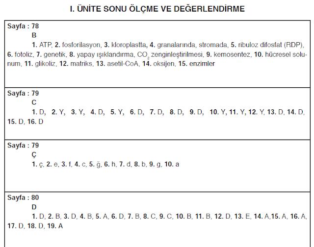 11. Sınıf İpekyolu Yayınları Biyoloji Ders Kitabı 78. 79. 80. Sayfa Cevapları