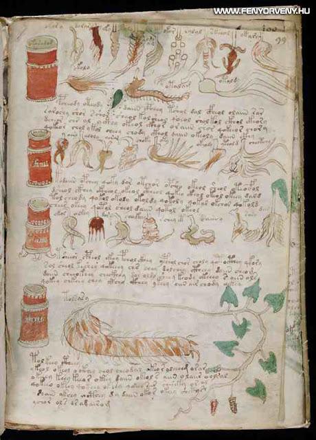 voynich kezirat 06 - A középkor legtitokzatosabb irománya, a Voynich-kézirat