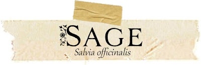 Magical and Medicianal uses of Sage. Includes FREE BOS page!