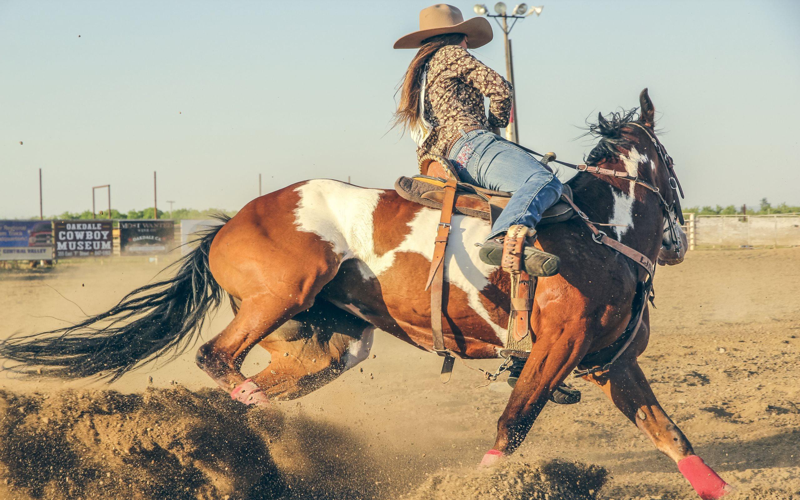 Rodeo hd desktop wallpapers