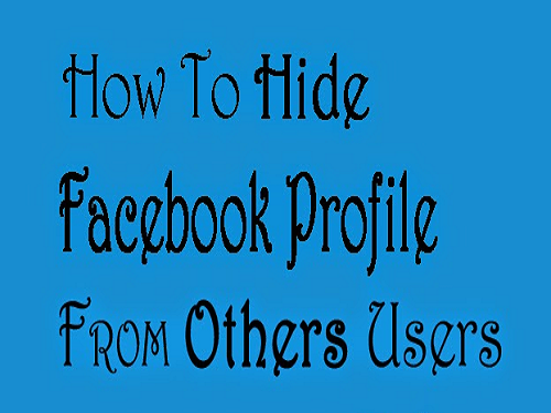 How To Hide Facebook Profile From Other Users