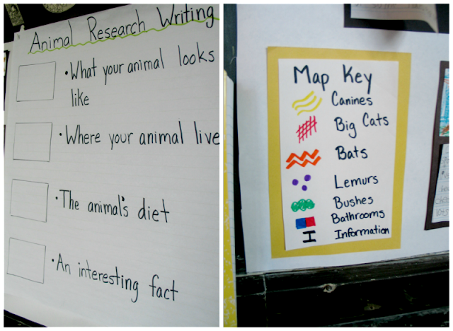Animal Research Writing First Grade