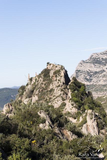 Ruta: Puig Cendrós  (499 m) y Sant Salvador de les Espases (413 m) (Els 100 Cims)