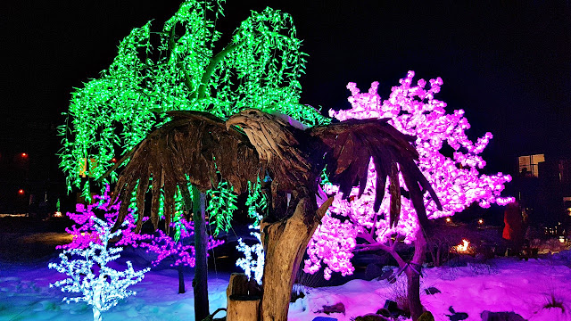LED shrubbery at the Kingfisher Lodge...