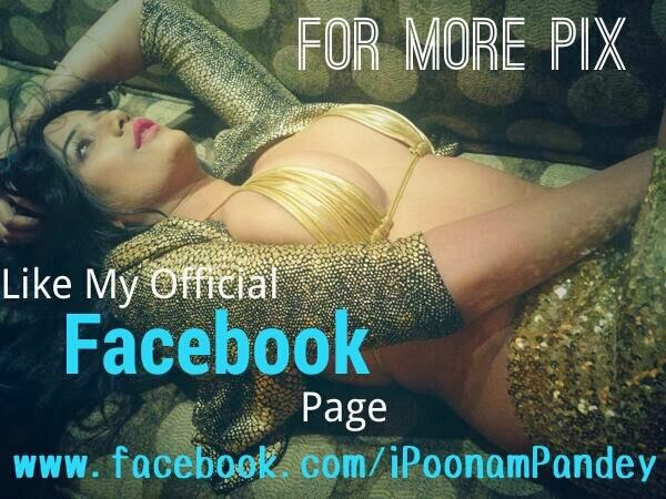 Poonam Pandey Hot 2014 twitt photos