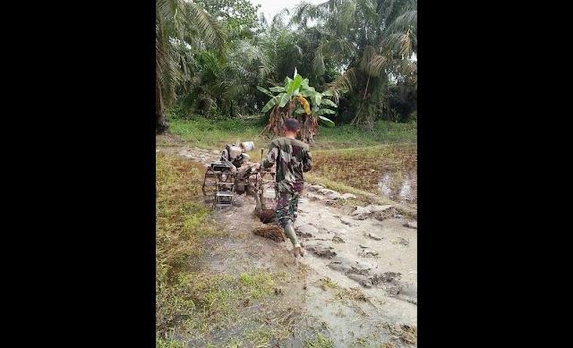 Anggota Tentara ini Membajak Sawah dengan Traktor Milik Petani demi Mensukseskan Swasembada Pangan