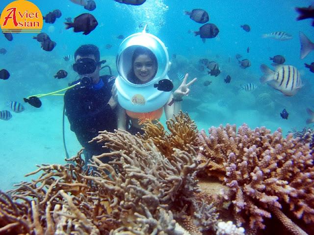Tour Đi Bộ Dưới Biển kết hợp tour 4 đảo 1