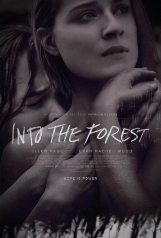 Into the Forest [2015] [DVDR] [NTSC] [Subtitulado]