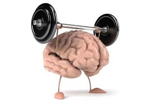 surungen-beynin-ozellikleri