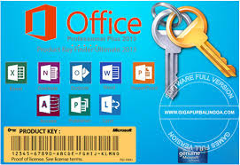 Ключ активации на Microsoft Office Professional Plus 2010