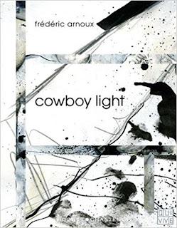 Chronique littéraire du roman Cowboy light