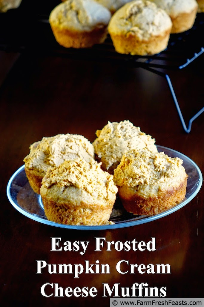 http://www.farmfreshfeasts.com/2014/10/easy-frosted-pumpkin-cream-cheese.html