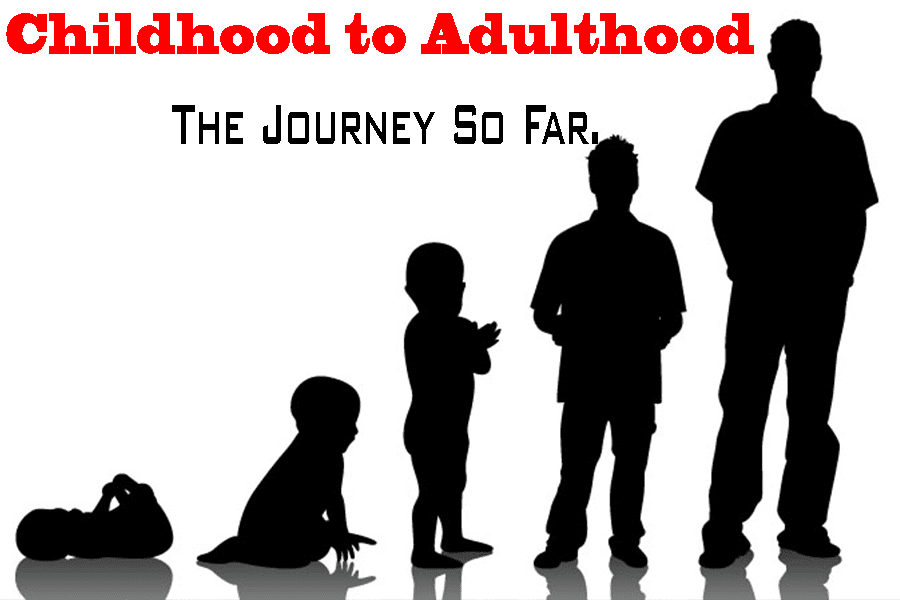 a journey to adulthood Curriculum the journey to adulthood curriculum consists of three phases in two-year cycles as the episcopal tenets of scripture, tradition and reason infuse life and energy into these concepts so do they infuse life and energy into these young teens.
