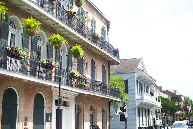 French Quarter building with ferns and railing in NOLA