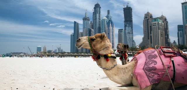 En Uygun Ucuz Katar Uçak Bileti