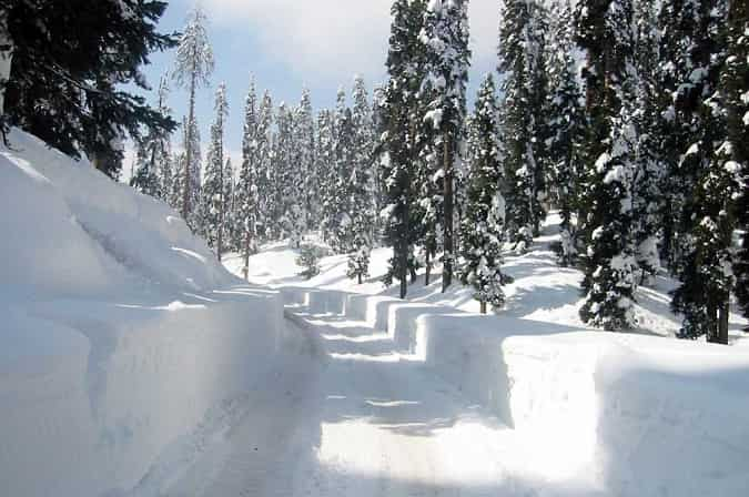 going through gulmarg