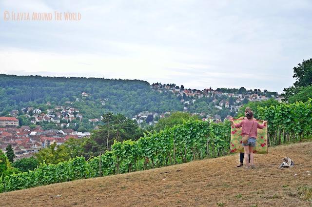 De picnic entre viñedos en el Karlshöhe de Stuttgart