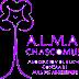 """XII Encuentro Nacional de ALMA """"Cuidadores: se hace camino al andar"""""""