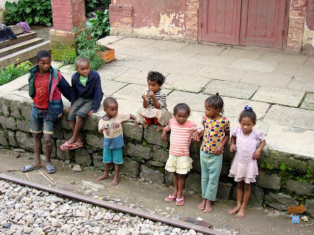 Madagascar: tren de la selva