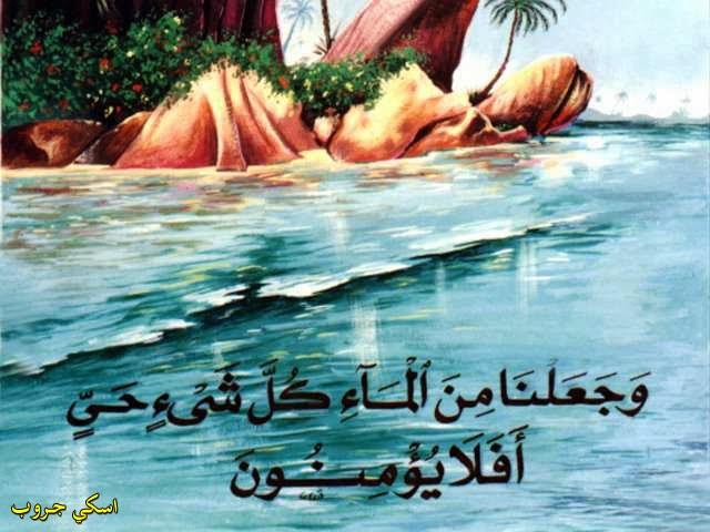 الحكمة في الماء Wisdom in the water`