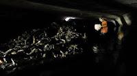 Kulit kabel penuhi got, Ahok semprot dinas Kominfo karena CCTV minim (Merdeka.com) - Tumpukan kulit kabel ditemukan di gorong-gorong sekitar Jl Medan Merdeka Selatan, Jakarta Pusa