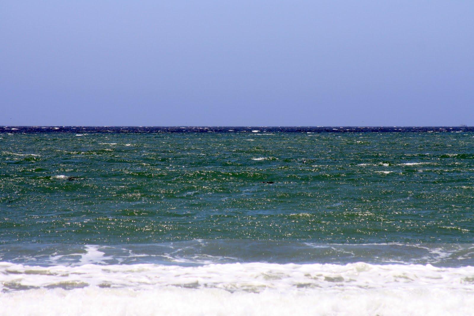 Rhymes With Magic The Eddys At Cayucos Beach