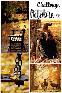 http://aubergedesloisirs.blogspot.com/2018/10/challenge-octobre-2018.html